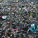 Sicurezza in pillole: chi può… salvi la bici!