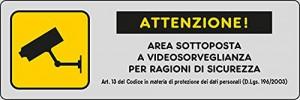 Area sottoposta a videosorveglianza per ragioni di sicurezza
