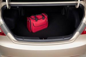 bag trunk