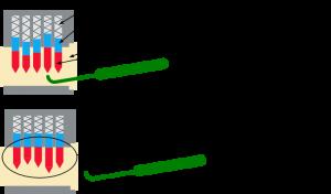 En el lockpicking cada pistón se alinea con la ganzúa.
